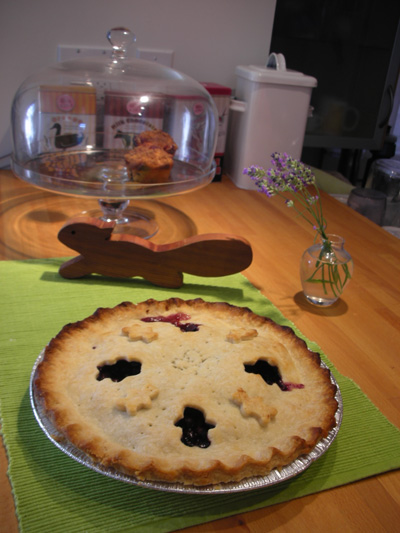 Baked Blue Berry Pie